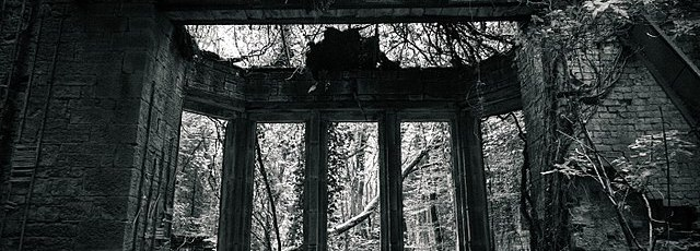 Dark overgrown ruin windows looking out onto forest