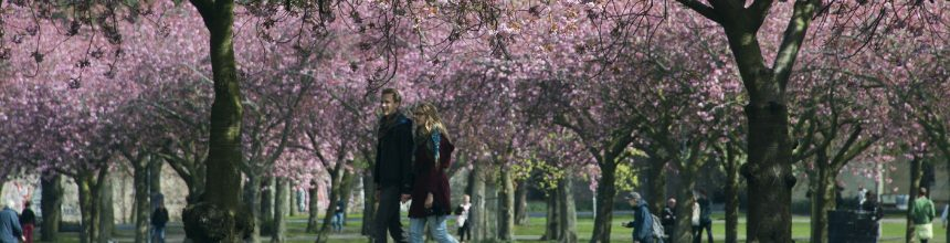Man and woman walking across the Meadows (city park) in front of pink blossomed trees.
