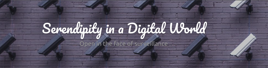 "Brick background with security cameras and the text ""Serendipity in a Digital World"""
