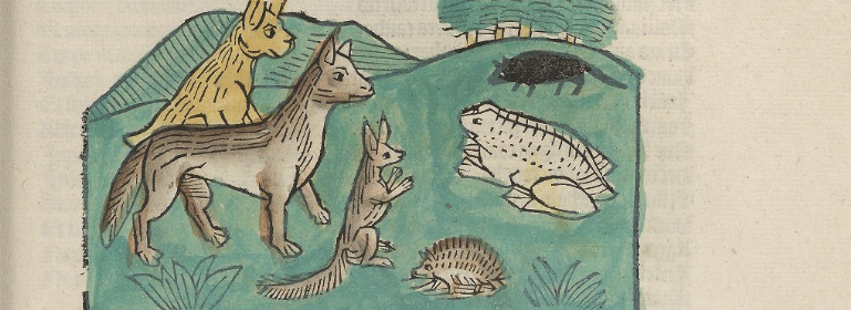 Coloured woodcut illustration of forest animals talking to a large frog