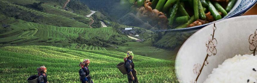 An image of rice paddy fields and workers, superimposed with two dishes of rice and beans.